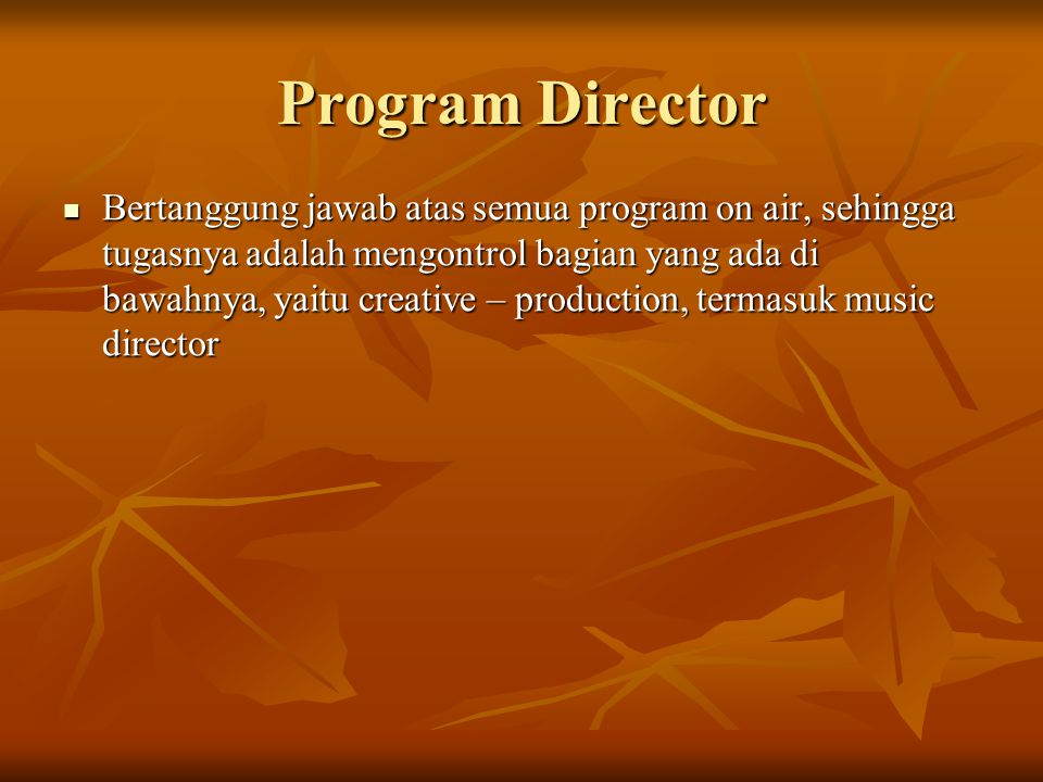 Program Director  Bertanggung jawab atas semua program on air, sehingga tugasnya adalah mengontrol bagian yang ada di bawahnya, yaitu creative – production, termasuk music director
