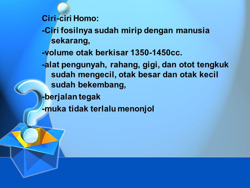 Manusia Purba Jenis Homo yang ditemukan di Indonesia: a.