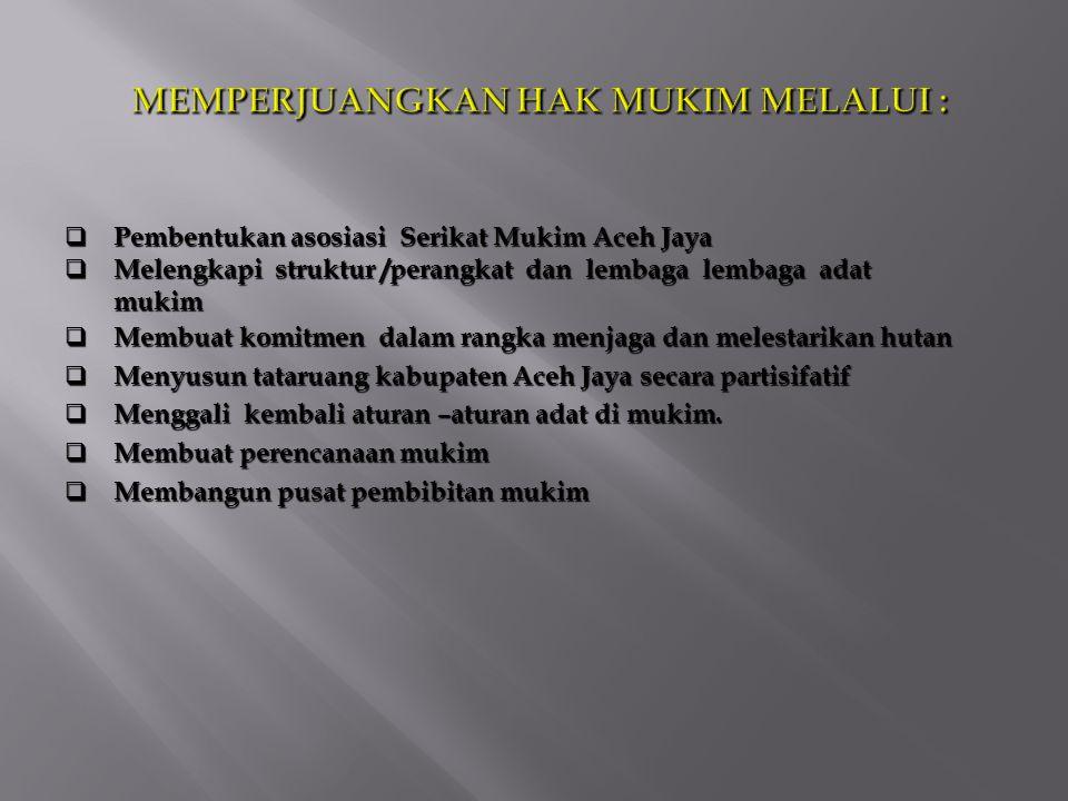  Pembentukan asosiasi Serikat Mukim Aceh Jaya  Melengkapi struktur /perangkat dan lembaga lembaga adat mukim  Membuat komitmen dalam rangka menjaga dan melestarikan hutan  Menyusun tataruang kabupaten Aceh Jaya secara partisifatif  Menggali kembali aturan –aturan adat di mukim.