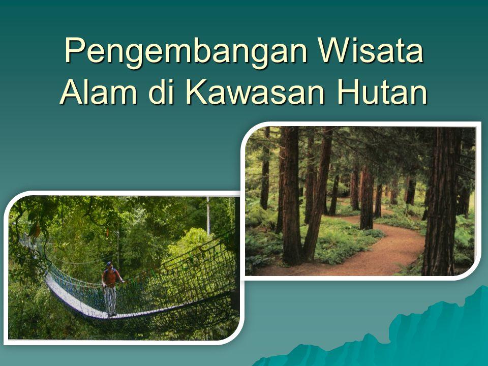 Zona Vegetasi pada tropical rain forest TN Gn.