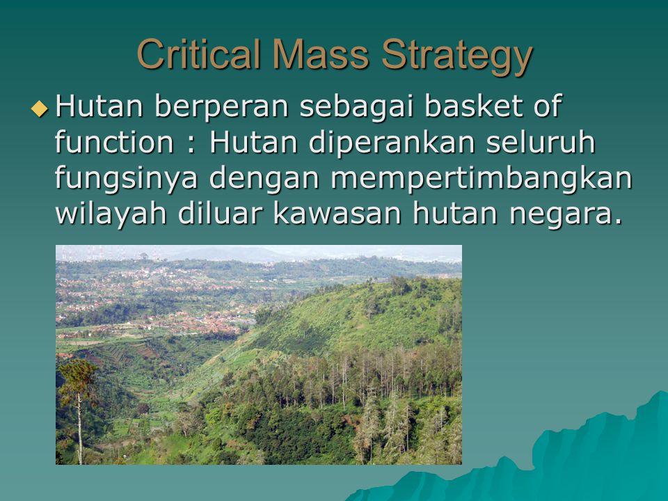  Hutan berperan sebagai basket of function : Hutan diperankan seluruh fungsinya dengan mempertimbangkan wilayah diluar kawasan hutan negara. Critical