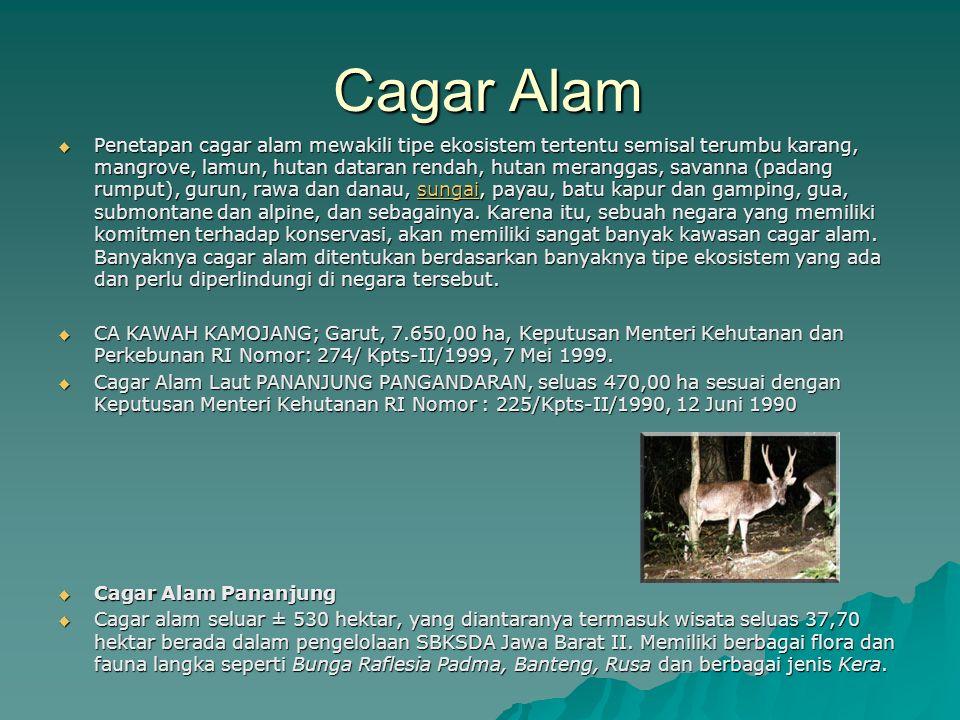 Cagar Alam Cagar Alam  Penetapan cagar alam mewakili tipe ekosistem tertentu semisal terumbu karang, mangrove, lamun, hutan dataran rendah, hutan mer