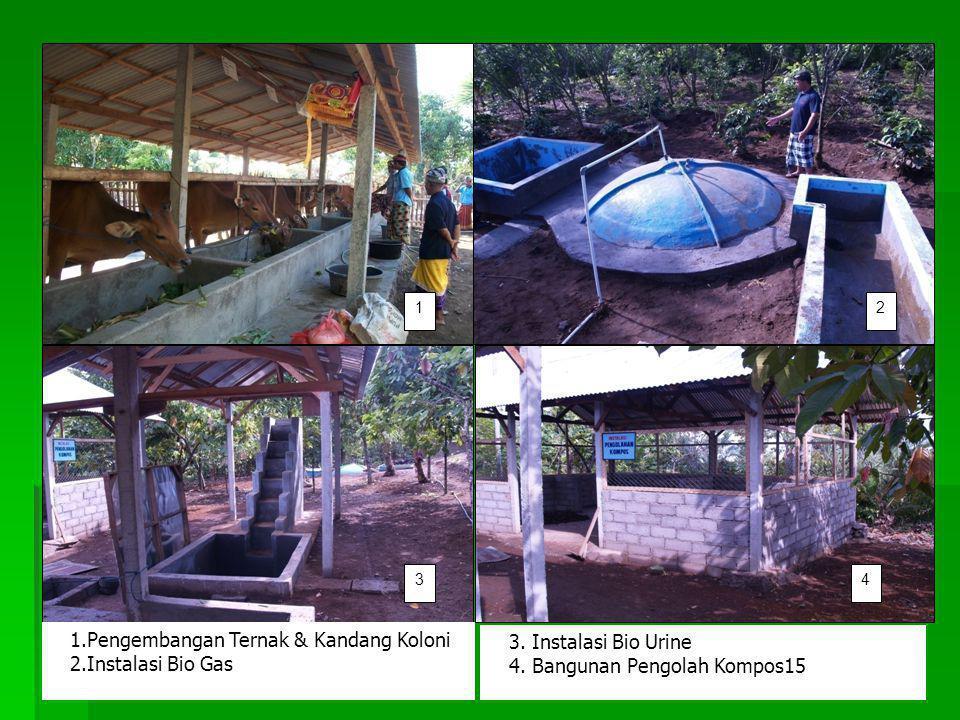 1.Pengembangan Ternak & Kandang Koloni 2.Instalasi Bio Gas 3. Instalasi Bio Urine 4. Bangunan Pengolah Kompos15 12 34
