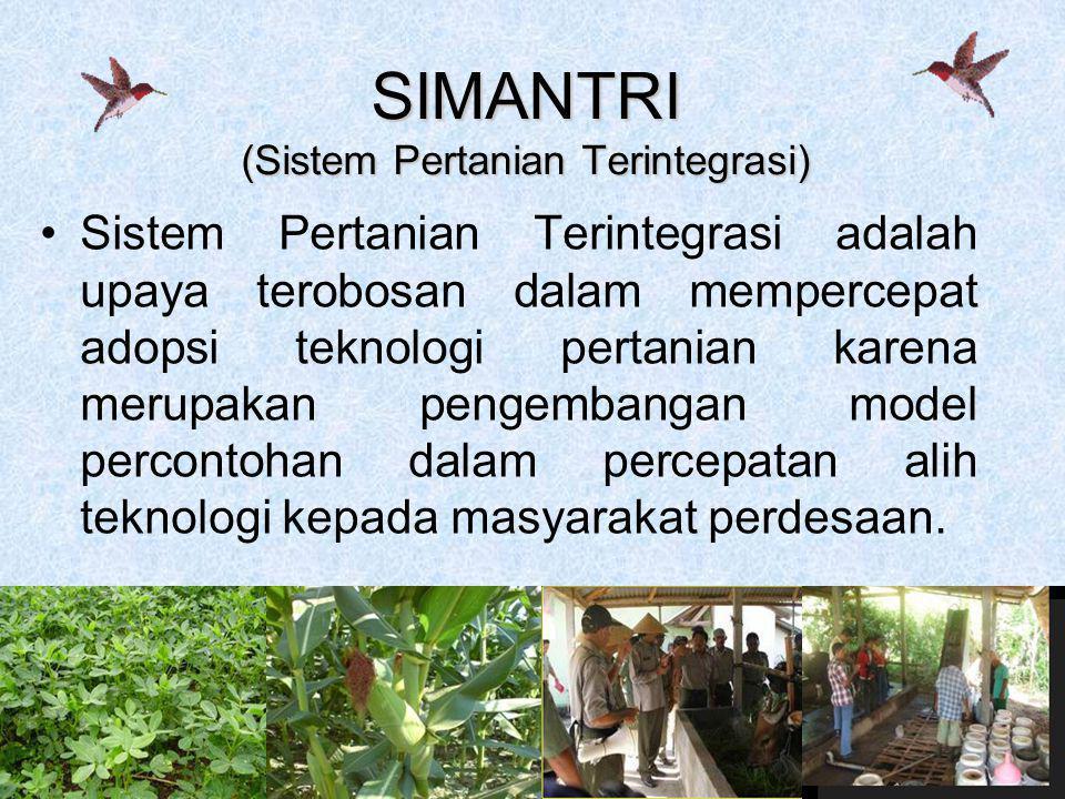 4 SIMANTRI (Sistem Pertanian Terintegrasi) •Sistem Pertanian Terintegrasi adalah upaya terobosan dalam mempercepat adopsi teknologi pertanian karena m