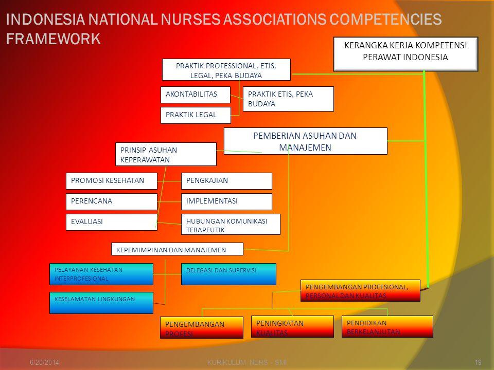 KURIKULUM NERS - SMI19 INDONESIA NATIONAL NURSES ASSOCIATIONS COMPETENCIES FRAMEWORK KERANGKA KERJA KOMPETENSI PERAWAT INDONESIA PRAKTIK PROFESSIONAL,