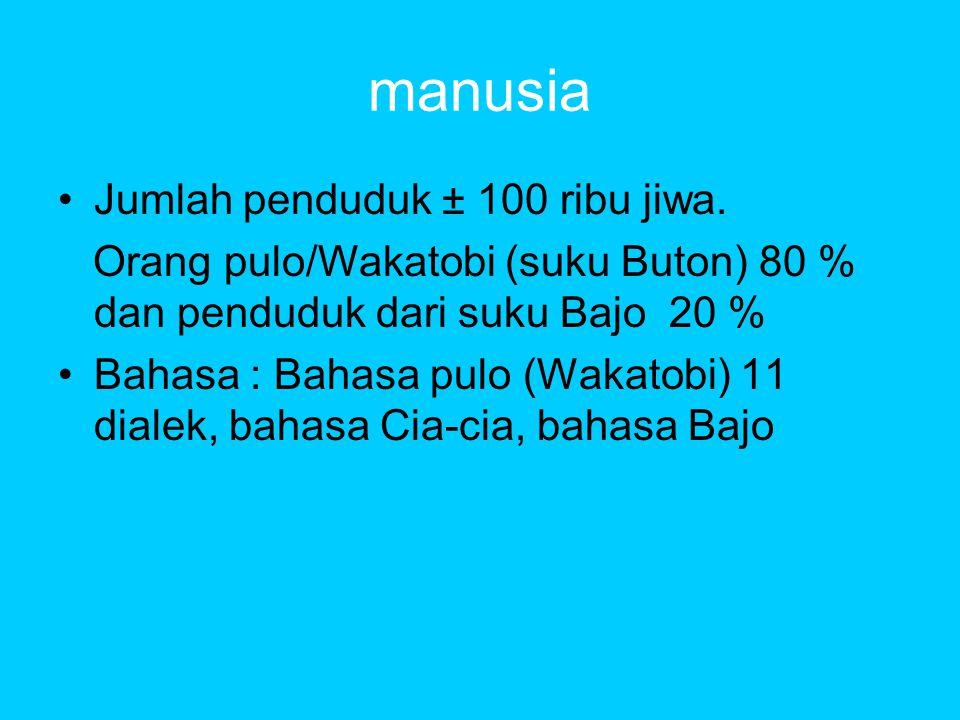 manusia •Jumlah penduduk ± 100 ribu jiwa.