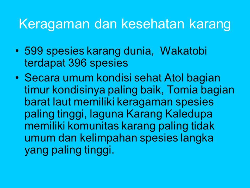 Keragaman dan kesehatan karang •599 spesies karang dunia, Wakatobi terdapat 396 spesies •Secara umum kondisi sehat Atol bagian timur kondisinya paling baik, Tomia bagian barat laut memiliki keragaman spesies paling tinggi, laguna Karang Kaledupa memiliki komunitas karang paling tidak umum dan kelimpahan spesies langka yang paling tinggi.