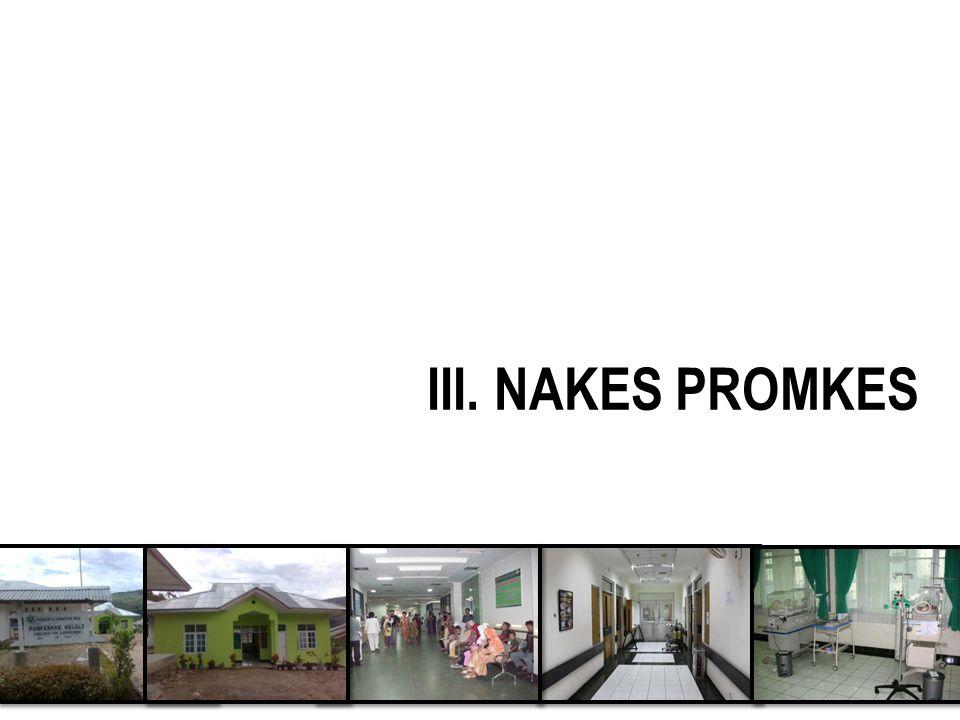 III. NAKES PROMKES