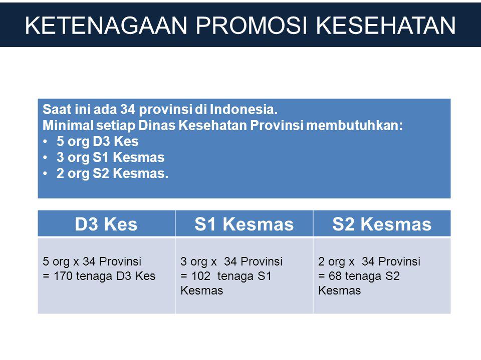 KETENAGAAN PROMOSI KESEHATAN Saat ini ada 34 provinsi di Indonesia. Minimal setiap Dinas Kesehatan Provinsi membutuhkan: •5 org D3 Kes •3 org S1 Kesma