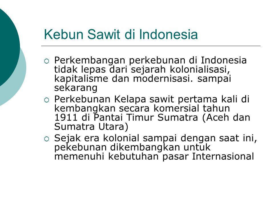 Kebun Sawit Indonesia Luas, akibat o Peningkatan Komsumsi Minyak Sawit di Pasar International o Ambisi Pemerintah untuk menjadi produsen minyak sawit no 1 dunia o Biaya Tenaga Kerja dan Lahan yang Murah o Berbagai kebijakan Pemerintah o Hak guna usaha (UUPA) o Izin usaha perkebunan (Permentan No 26 tahun 2007)
