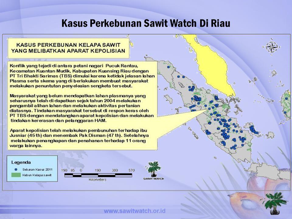 Kasus Perkebunan Sawit Watch Di Riau