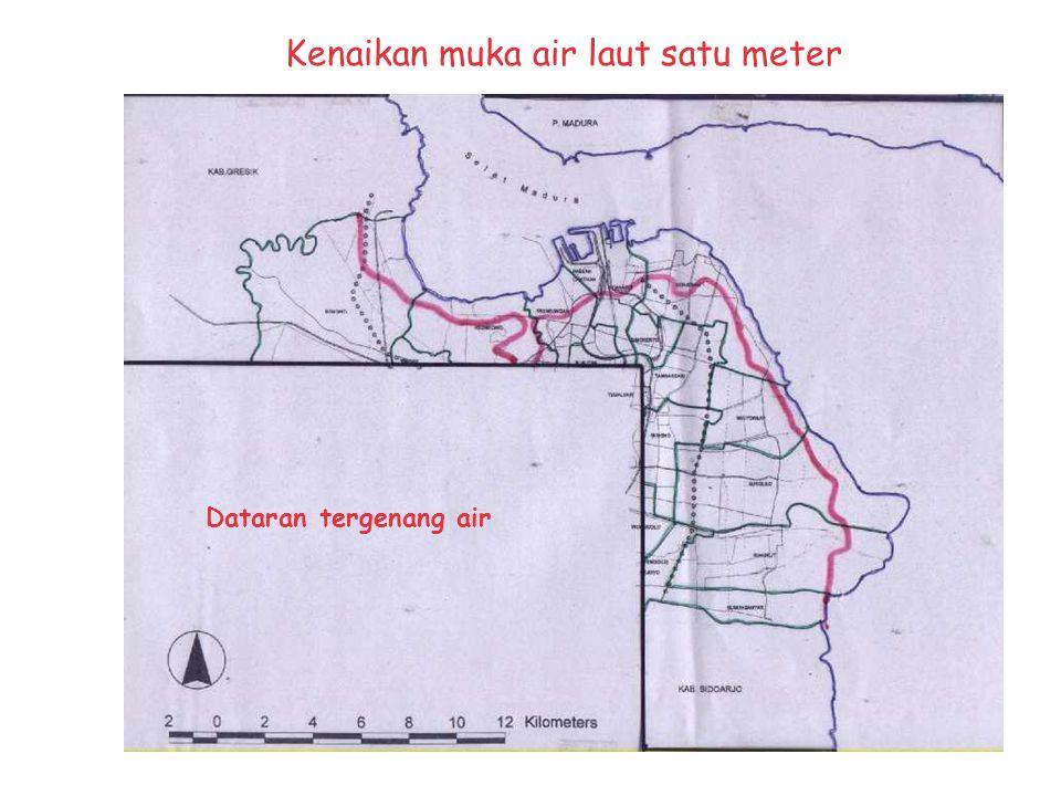 Kawasan pesisir Surabaya Kawasan Pesisir: 9 kecamatan dan 17 kelurahan Penduduk di kawasan pesisir: ± 700 ribu kepadatan terendah di Kec. Benowo: 8 ji
