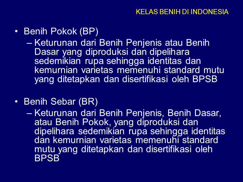 •Benih Pokok (BP) –Keturunan dari Benih Penjenis atau Benih Dasar yang diproduksi dan dipelihara sedemikian rupa sehingga identitas dan kemurnian vari
