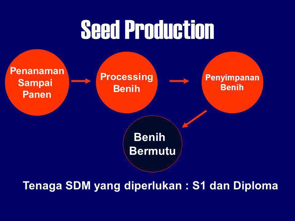 Seed Production Penanaman Sampai Panen Processing Benih Bermutu Penyimpanan Benih Tenaga SDM yang diperlukan : S1 dan Diploma