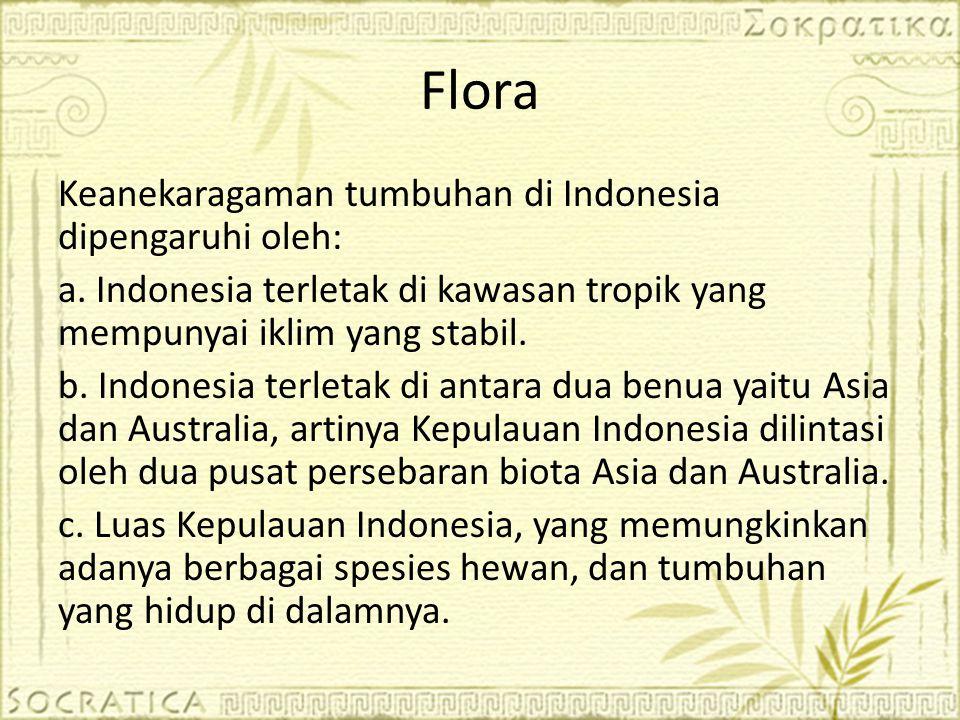 Keanekaragaman tumbuhan di Indonesia dipengaruhi oleh: a. Indonesia terletak di kawasan tropik yang mempunyai iklim yang stabil. b. Indonesia terletak