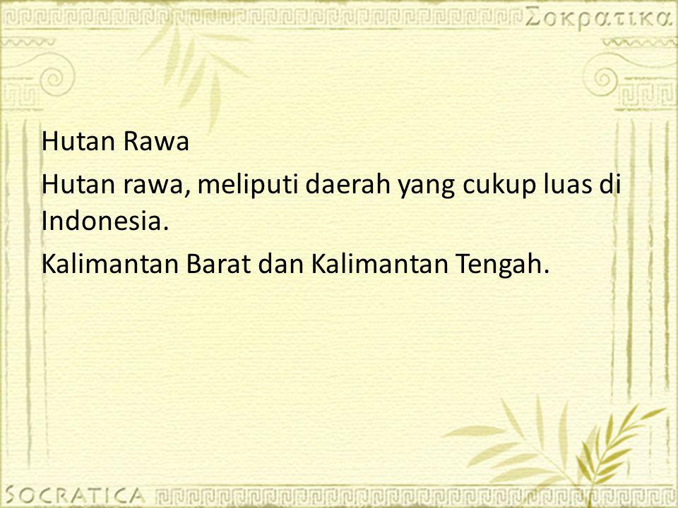 Hutan Rawa Hutan rawa, meliputi daerah yang cukup luas di Indonesia. Kalimantan Barat dan Kalimantan Tengah.