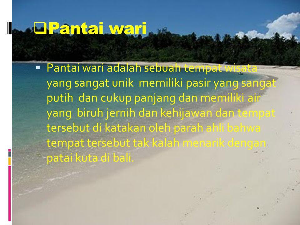  Pantai wari PPantai wari adalah sebuah tempat wisata yang sangat unik memiliki pasir yang sangat putih dan cukup panjang dan memiliki air yang biruh jernih dan kehijawan dan tempat tersebut di katakan oleh parah ahli bahwa tempat tersebut tak kalah menarik dengan patai kuta di bali.
