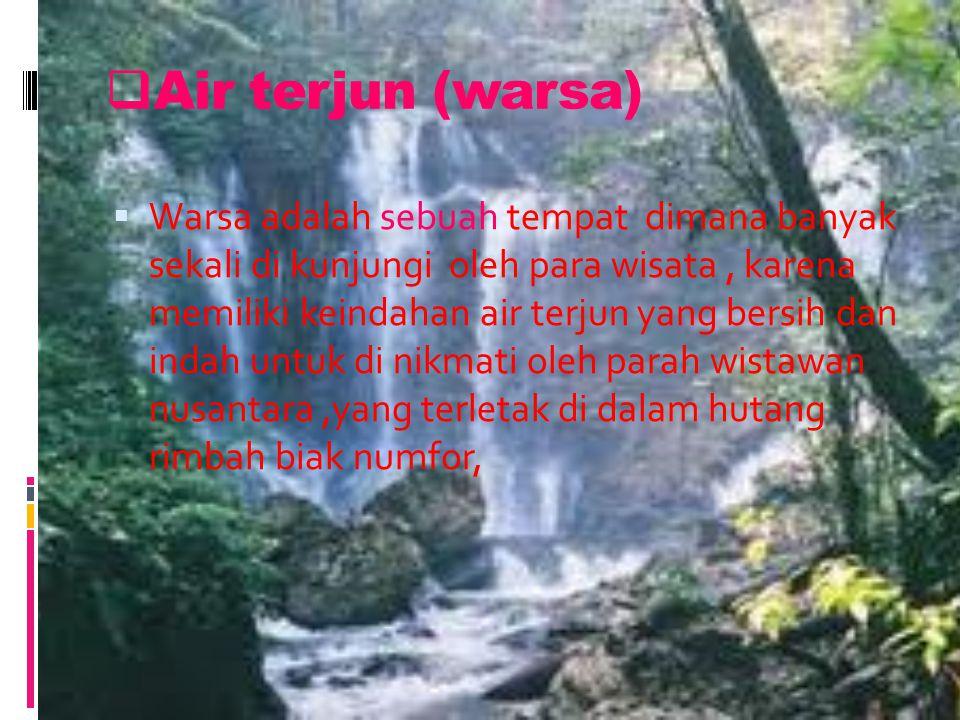  Air terjun (warsa) WWarsa adalah sebuah tempat dimana banyak sekali di kunjungi oleh para wisata, karena memiliki keindahan air terjun yang bersih dan indah untuk di nikmati oleh parah wistawan nusantara,yang terletak di dalam hutang rimbah biak numfor,
