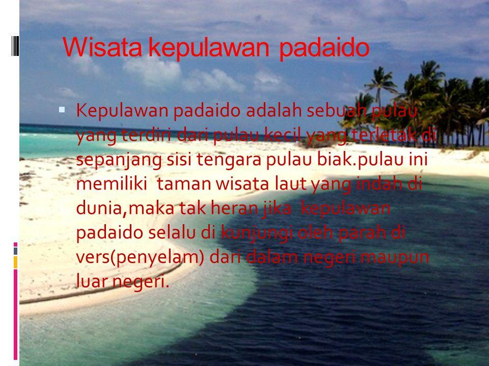 Wisata kepulawan padaido  Kepulawan padaido adalah sebuah pulau yang terdiri dari pulau kecil yang terletak di sepanjang sisi tengara pulau biak.pulau ini memiliki taman wisata laut yang indah di dunia,maka tak heran jika kepulawan padaido selalu di kunjungi oleh parah di vers(penyelam) dari dalam negeri maupun luar negeri.