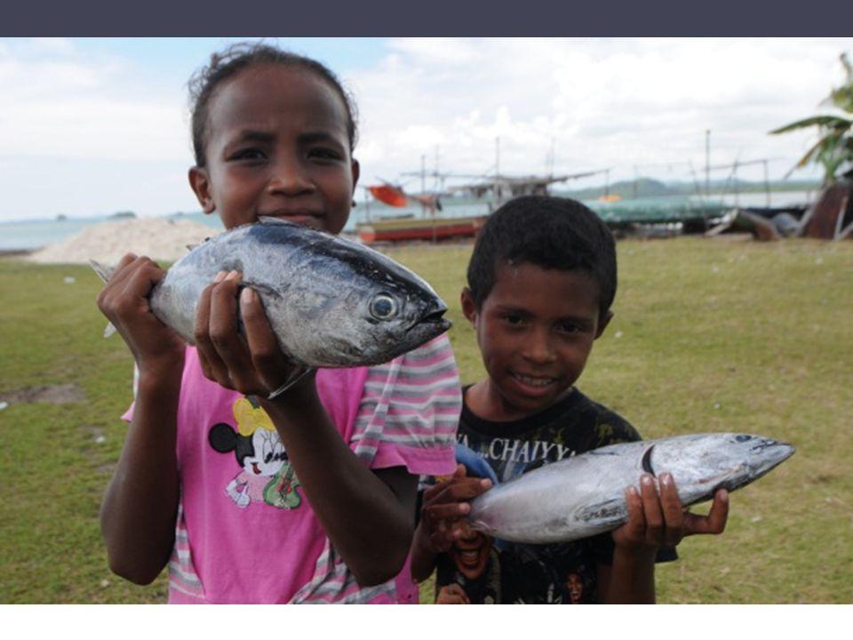 Memaksimalkan fungsi Zona tabungan di Kawasan Konservasi Laut Daerah Misool - Raja Ampat Muhajir