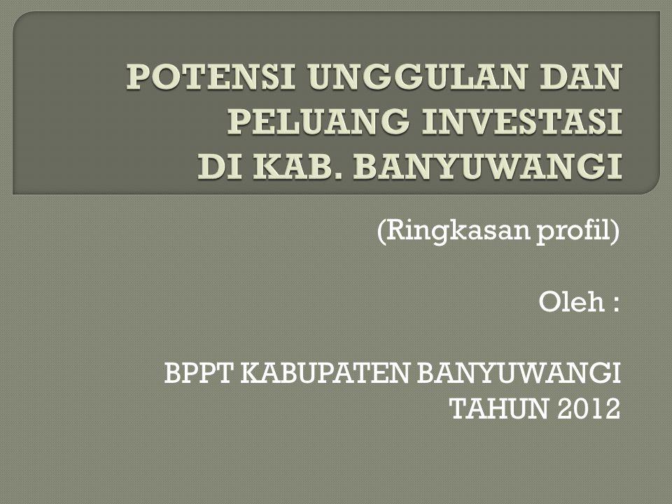 (Ringkasan profil) Oleh : BPPT KABUPATEN BANYUWANGI TAHUN 2012