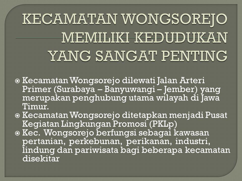  Kecamatan Wongsorejo dilewati Jalan Arteri Primer (Surabaya – Banyuwangi – Jember) yang merupakan penghubung utama wilayah di Jawa Timur.