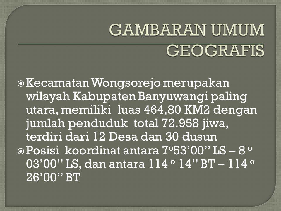  Kecamatan Wongsorejo merupakan wilayah Kabupaten Banyuwangi paling utara, memiliki luas 464,80 KM2 dengan jumlah penduduk total 72.958 jiwa, terdiri dari 12 Desa dan 30 dusun  Posisi koordinat antara 7 o 53'00'' LS – 8 o 03'00'' LS, dan antara 114 o 14'' BT – 114 o 26'00'' BT