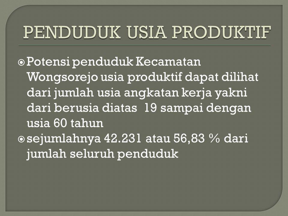  Potensi penduduk Kecamatan Wongsorejo usia produktif dapat dilihat dari jumlah usia angkatan kerja yakni dari berusia diatas 19 sampai dengan usia 60 tahun  sejumlahnya 42.231 atau 56,83 % dari jumlah seluruh penduduk