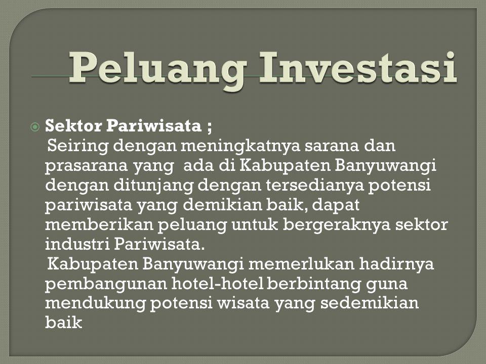  Sektor Pariwisata ; Seiring dengan meningkatnya sarana dan prasarana yang ada di Kabupaten Banyuwangi dengan ditunjang dengan tersedianya potensi pariwisata yang demikian baik, dapat memberikan peluang untuk bergeraknya sektor industri Pariwisata.