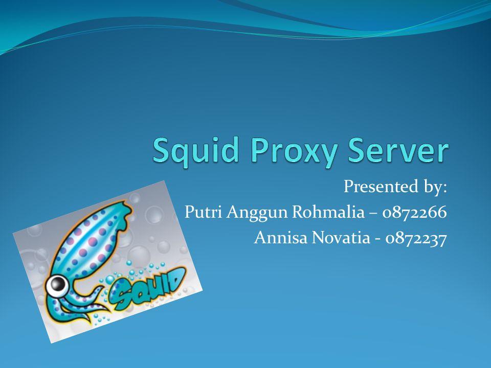 Presented by: Putri Anggun Rohmalia – 0872266 Annisa Novatia - 0872237