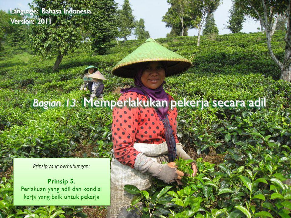 ©2009 Rainforest Alliance Bagian 13: Memperlakukan pekerja secara adil Language: Bahasa Indonesia Version: 2011 Prinsip yang berhubungan: Prinsip 5.