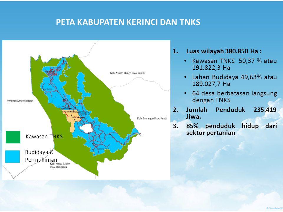 Kawasan TNKS Budidaya & Permukiman PETA KABUPATEN KERINCI DAN TNKS 1.Luas wilayah 380.850 Ha : • Kawasan TNKS 50,37 % atau 191.822,3 Ha • Lahan Budida