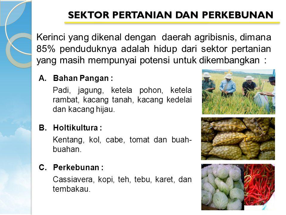 Kerinci yang dikenal dengan daerah agribisnis, dimana 85% penduduknya adalah hidup dari sektor pertanian yang masih mempunyai potensi untuk dikembangk