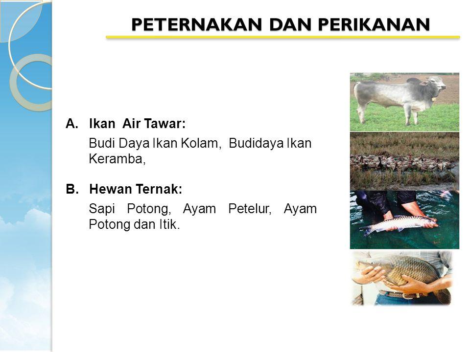 PETERNAKAN DAN PERIKANAN A.Ikan Air Tawar: Budi Daya Ikan Kolam, Budidaya Ikan Keramba, B.Hewan Ternak: Sapi Potong, Ayam Petelur, Ayam Potong dan Itik.