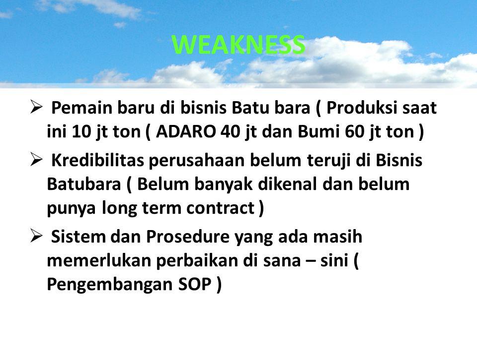  Pemain baru di bisnis Batu bara ( Produksi saat ini 10 jt ton ( ADARO 40 jt dan Bumi 60 jt ton )  Kredibilitas perusahaan belum teruji di Bisnis Ba