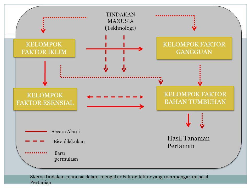 TINDAKAN MANUSIA (Tekhnologi) KELOMPOK FAKTOR IKLIM KELOMPOK FAKTOR ESENSIAL KELOMPOK FAKTOR BAHAN TUMBUHAN KELOMPOK FAKTOR GANGGUAN Hasil Tanaman Per