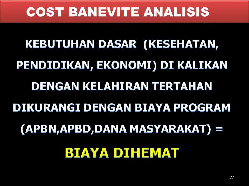 COST BANEVITE ANALISIS 27