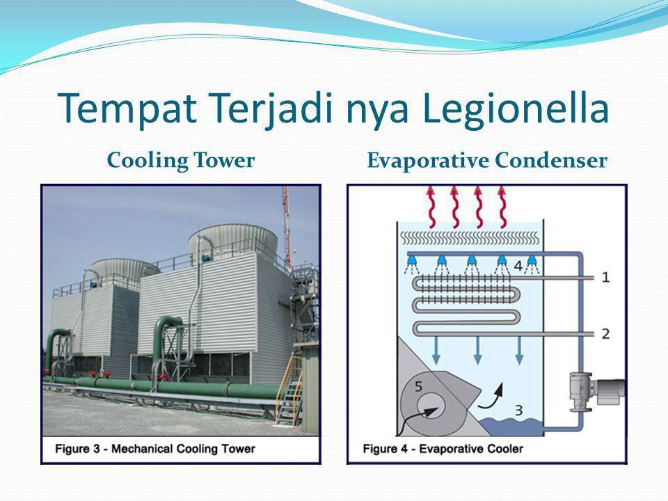Tempat Terjadi nya Legionella Cooling Tower Evaporative Condenser