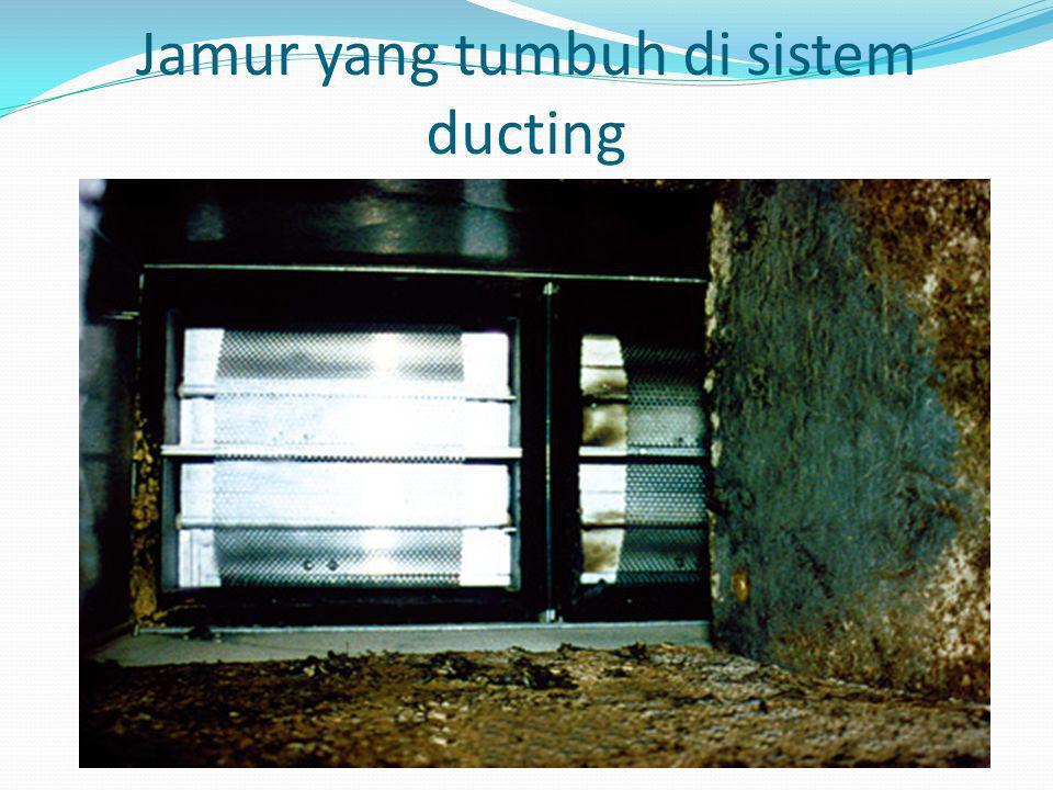 Jamur yang tumbuh di sistem ducting