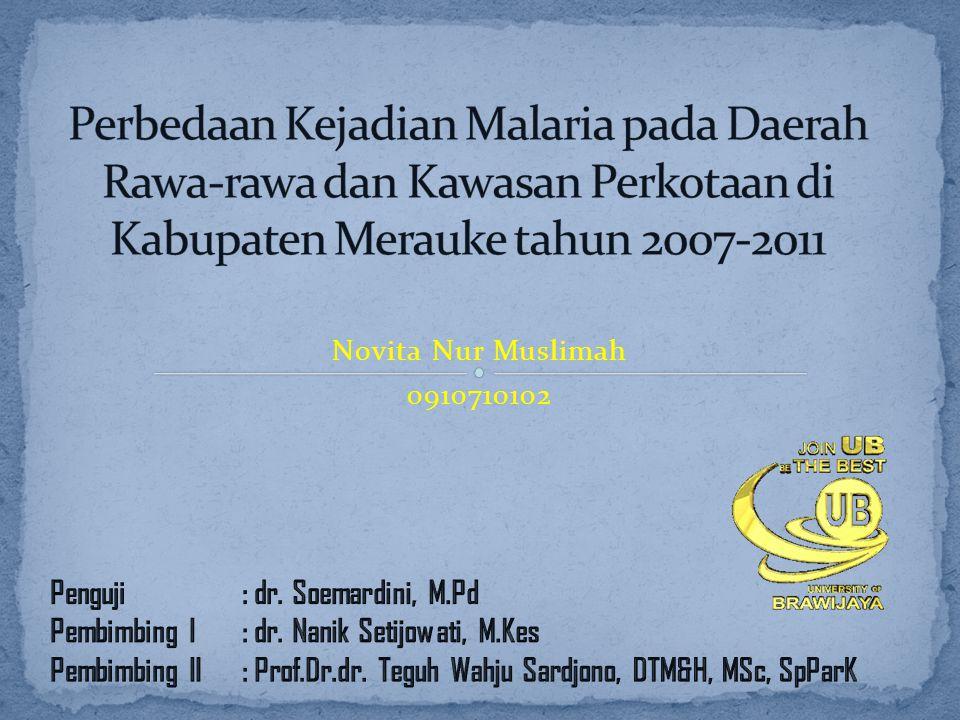 Novita Nur Muslimah 0910710102
