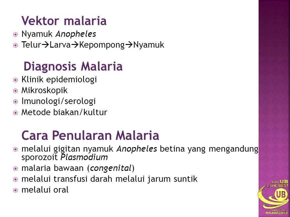 Vektor malaria  Nyamuk Anopheles  Telur  Larva  Kepompong  Nyamuk Diagnosis Malaria  Klinik epidemiologi  Mikroskopik  Imunologi/serologi  Me