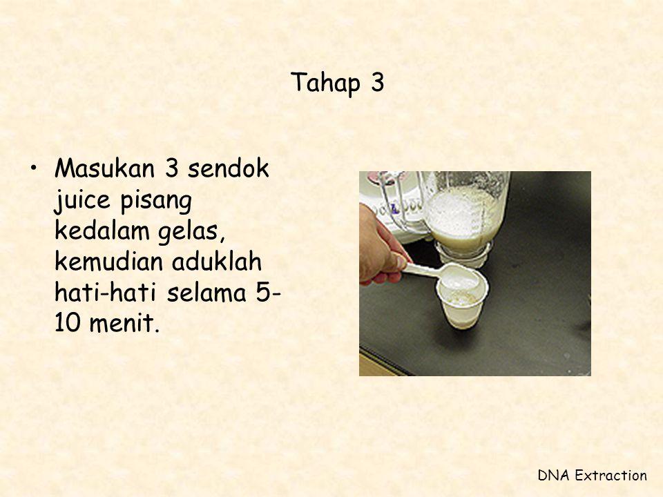 Tahap 3 •Masukan 3 sendok juice pisang kedalam gelas, kemudian aduklah hati-hati selama 5- 10 menit. DNA Extraction