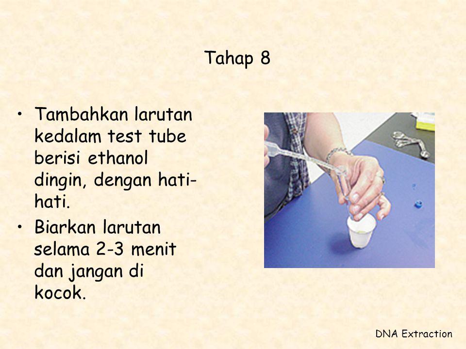 Tahap 8 •Tambahkan larutan kedalam test tube berisi ethanol dingin, dengan hati- hati. •Biarkan larutan selama 2-3 menit dan jangan di kocok. DNA Extr