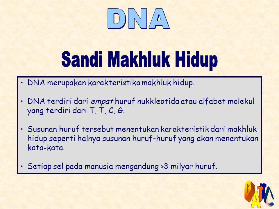 •DNA merupakan karakteristika makhluk hidup. •DNA terdiri dari empat huruf nukkleotida atau alfabet molekul yang terdiri dari T, T, C, G. •Susunan hur
