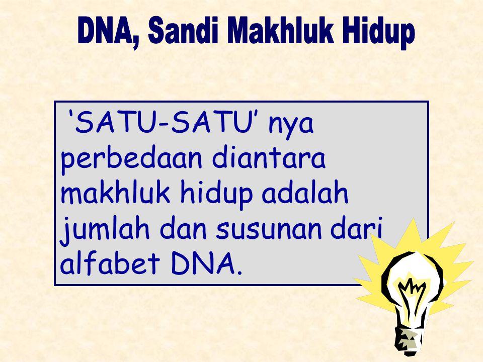 'SATU-SATU' nya perbedaan diantara makhluk hidup adalah jumlah dan susunan dari alfabet DNA.