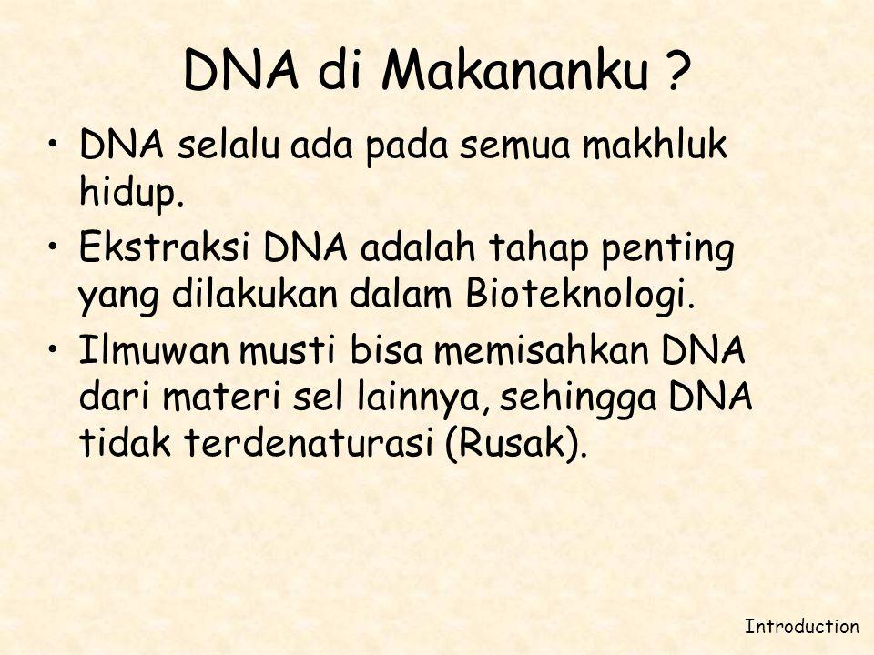 DNA di Makananku ? •DNA selalu ada pada semua makhluk hidup. •Ekstraksi DNA adalah tahap penting yang dilakukan dalam Bioteknologi. •Ilmuwan musti bis