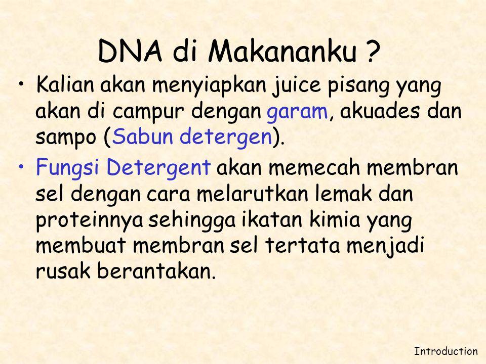 •Kalian akan menyiapkan juice pisang yang akan di campur dengan garam, akuades dan sampo (Sabun detergen). •Fungsi Detergent akan memecah membran sel