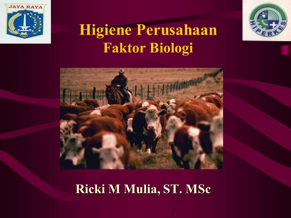 Higiene Perusahaan Faktor Biologi Ricki M Mulia, ST. MSc