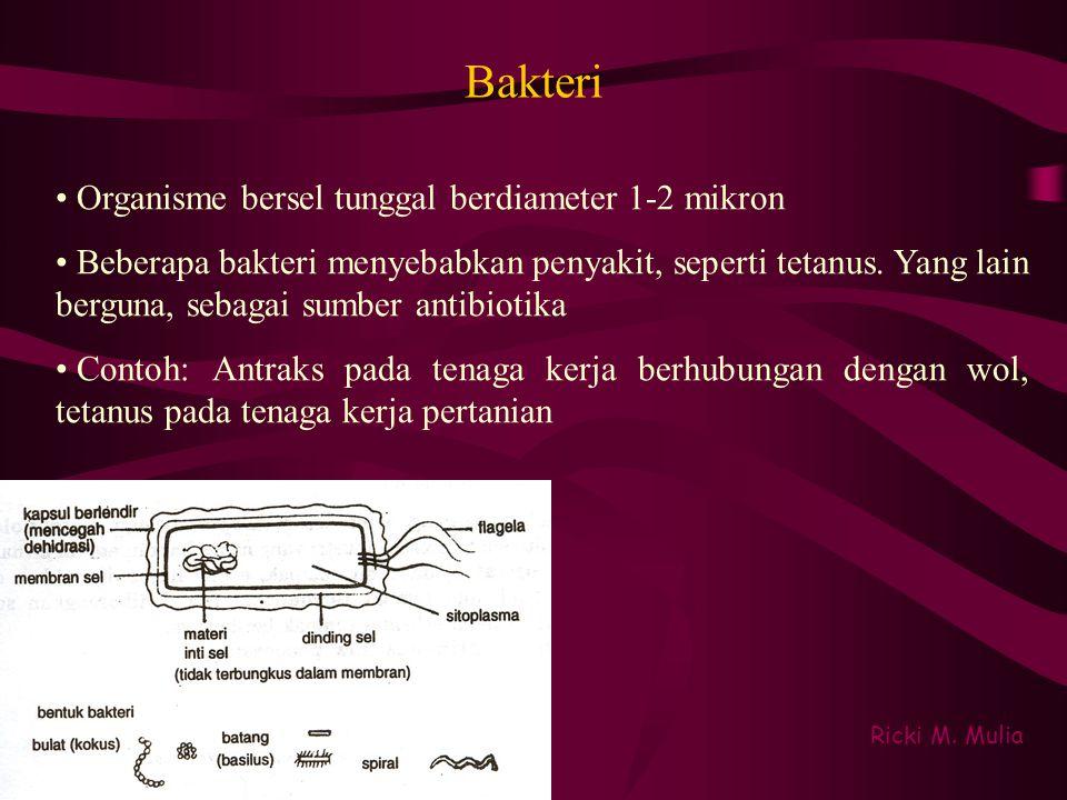 Bakteri Ricki M. Mulia • Organisme bersel tunggal berdiameter 1-2 mikron • Beberapa bakteri menyebabkan penyakit, seperti tetanus. Yang lain berguna,