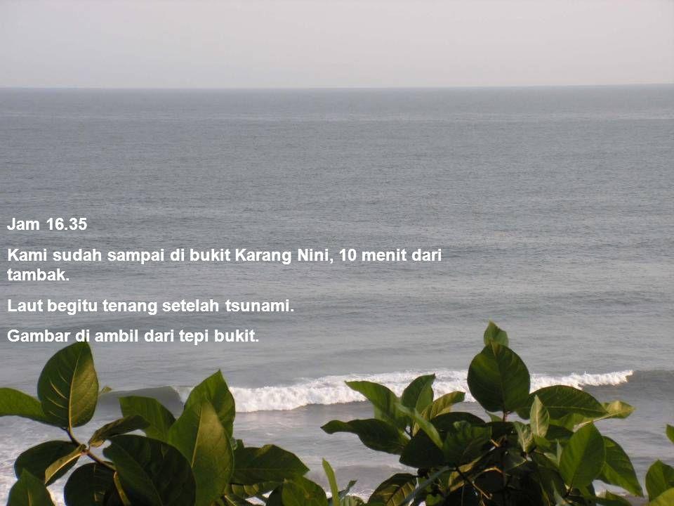 Jam 16.35 Kami sudah sampai di bukit Karang Nini, 10 menit dari tambak. Laut begitu tenang setelah tsunami. Gambar di ambil dari tepi bukit.